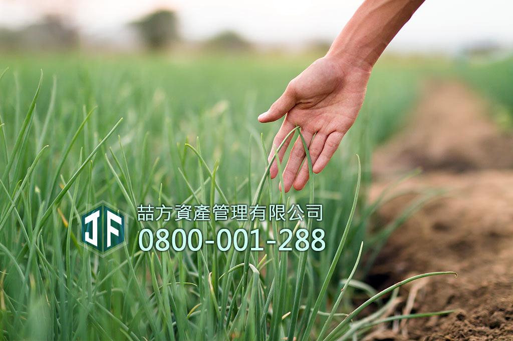 農地貸款救急方案,手觸摸農作物蔥