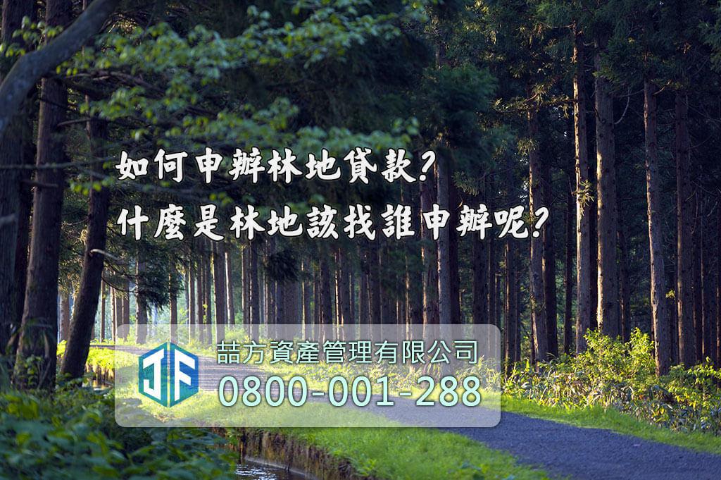 台灣山坡路邊森林地
